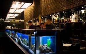 Fishtankbar
